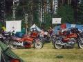 1986-06-Midsommar-Skattungbyn-42