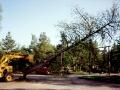 1992-05-Tradfallning